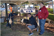 Men with Pig and FFA Sign